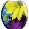 """Сиденье для унитаза с крышкой AQUA-PRIME """"BASE-Comfort"""" DIGITAL AQP.06.3002 (Турция)"""